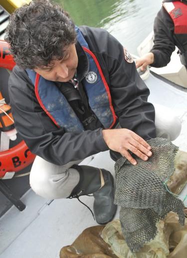 Operations vice president, Vittorio Venturini, checks scallop spats on setting nets.