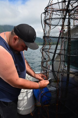 Tlowitsis Guardian Brandon Wilson sews up a lantern net on June 28, 2017. A sock of blue mussel seeds hangs down the centre of the cylindrical net; the space between the mussels and the lantern net provides a protective barrier against potential predators. Photo credit: Don Tillapaugh